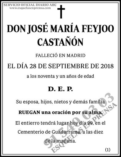 José Maria Feyjoo Castañón